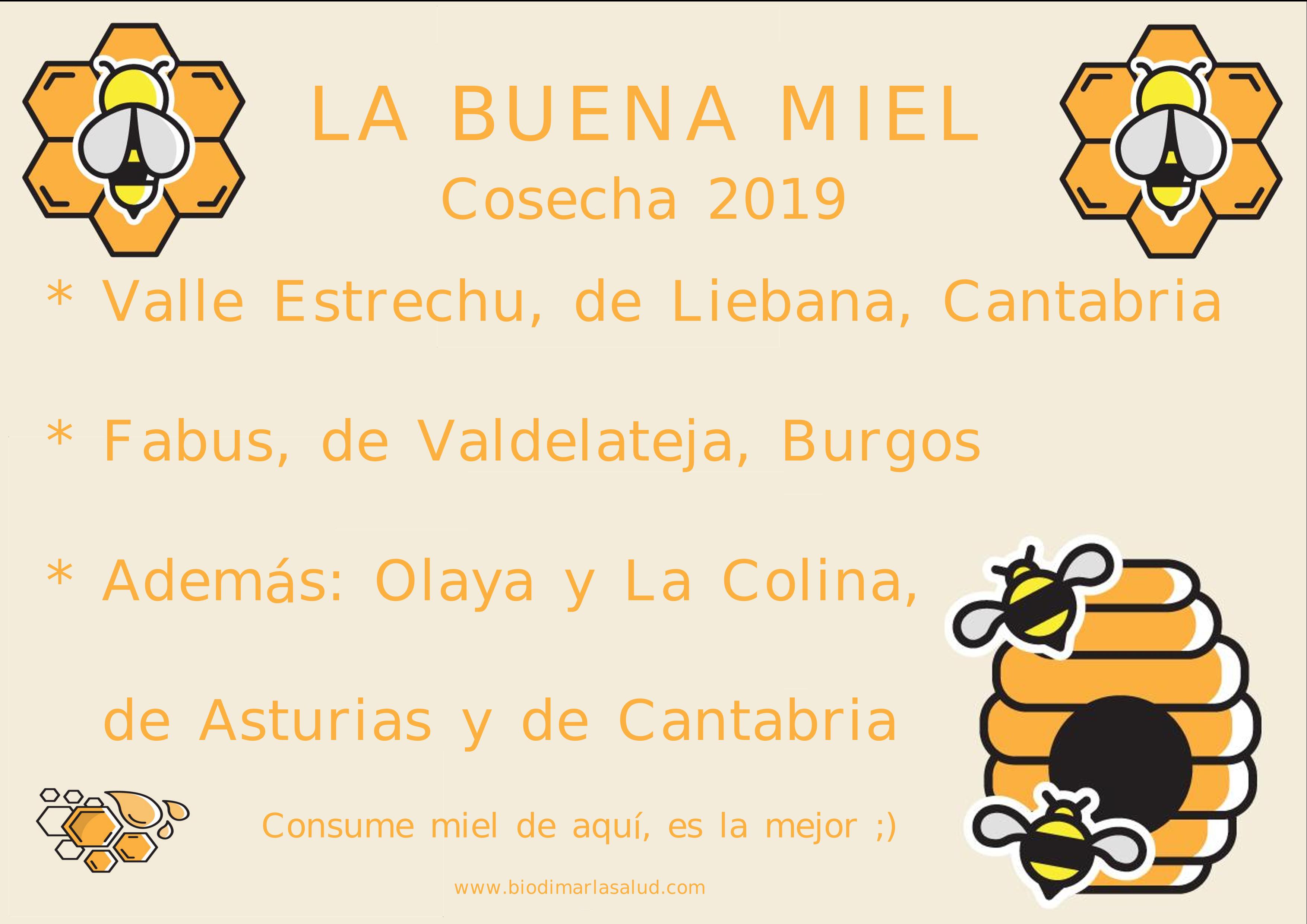 CARTEL MIEL 2019